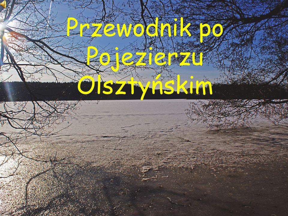 Położenie Duży mezoregion fizycznogeograficzny na Pojezierzu Mazurskim.
