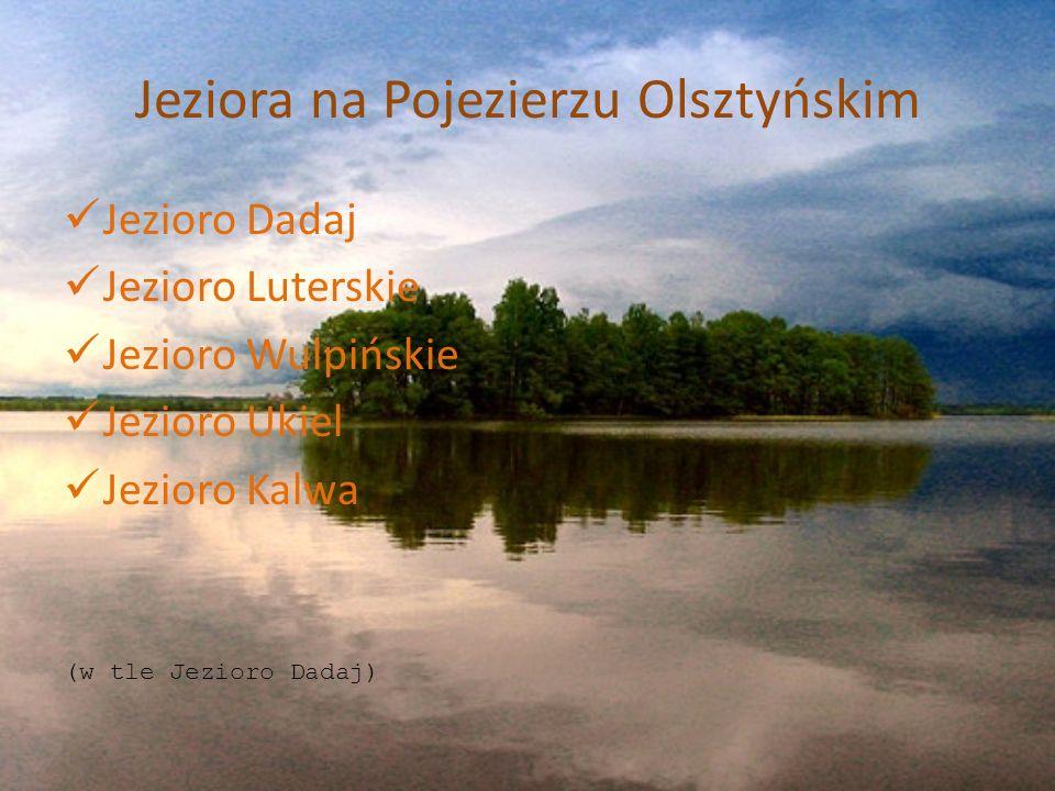Lasy na Pojezierzu Olsztyńskim Cechą charakterystyczną powiatu olsztyńskiego jest duża lesistość (36,96%) w porównaniu do średniej w kraju (28, 4%), a nawet w województwie warmińsko-mazurskim (29,64%).