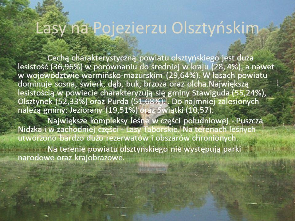 Zabytki W Olsztynie jest co oglądać - posiada wiele zabytkowych kościołów, katedrę Świętego Jakuba i pamiątki z czasów rządów Mikołaja Kopernika, któremu przypadła m.in.