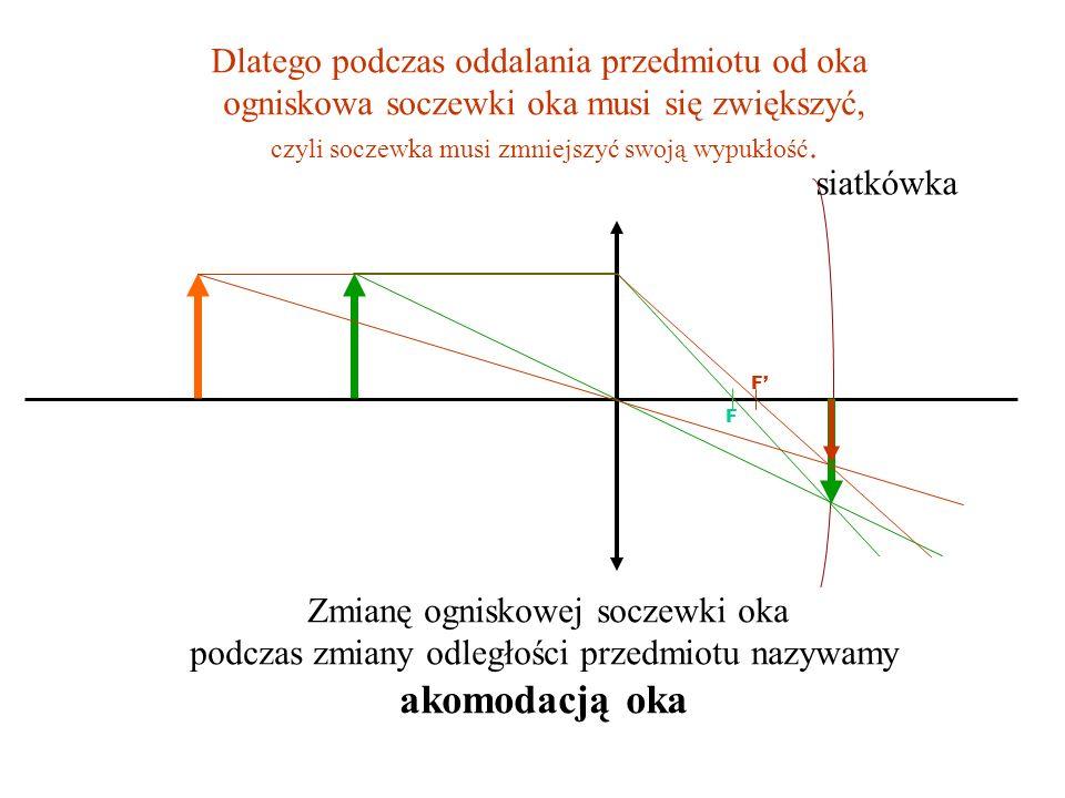 Konstrukcja obrazu na siatkówce oka (na rysunkach nie została zachowana proporcja między odległością przedmiotu od soczewki oka, a odległością siatkówki od soczewki oka.) Załóżmy, że gdy przedmiot jest blisko, jego obraz powstaje na siatkówce Gdyby przedmiot się oddalił, a ogniskowa soczewki oka nie uległa zmianie, obraz powstałby przed siatkówką i widzielibyśmy go niewyraźnie.