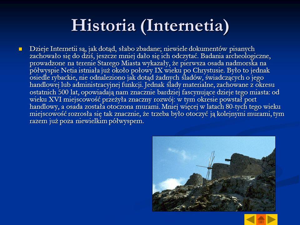 Historia (Internetia) Dzieje Internetii są, jak dotąd, słabo zbadane; niewiele dokumentów pisanych zachowało się do dziś, jeszcze mniej dało się ich odczytać.