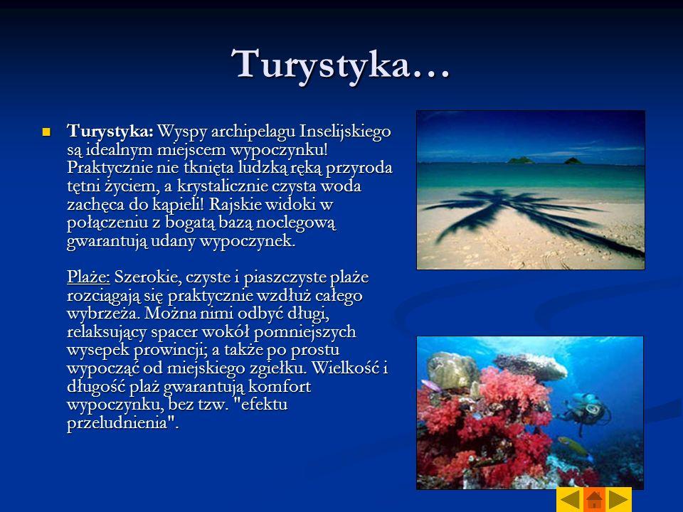 Turystyka… Turystyka: Wyspy archipelagu Inselijskiego są idealnym miejscem wypoczynku.