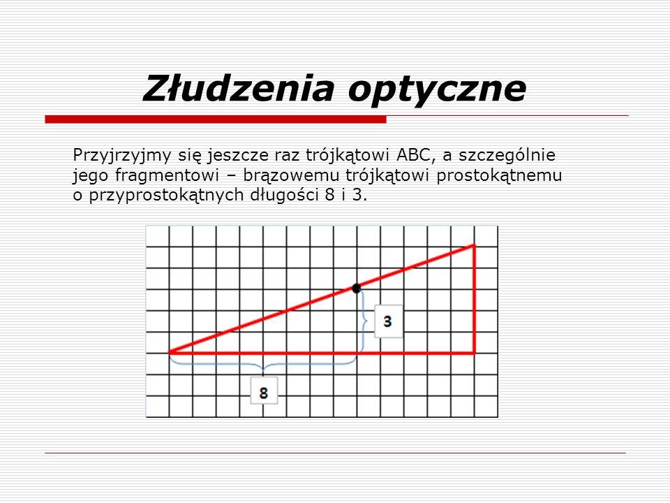 Złudzenia optyczne Przyjrzyjmy się jeszcze raz trójkątowi ABC, a szczególnie jego fragmentowi – brązowemu trójkątowi prostokątnemu o przyprostokątnych