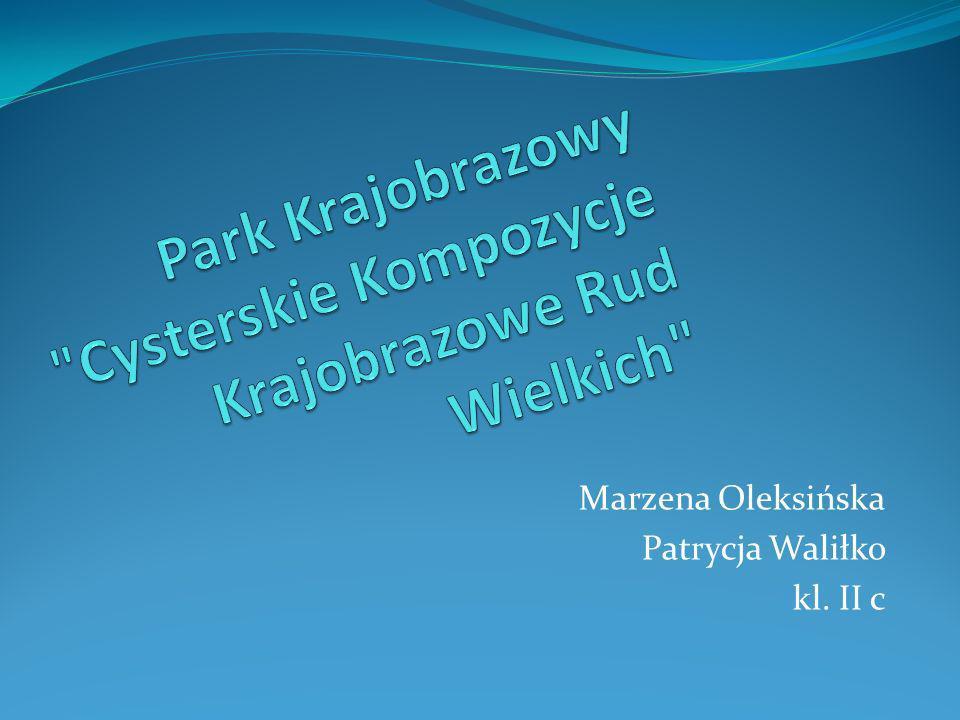 Marzena Oleksińska Patrycja Waliłko kl. II c