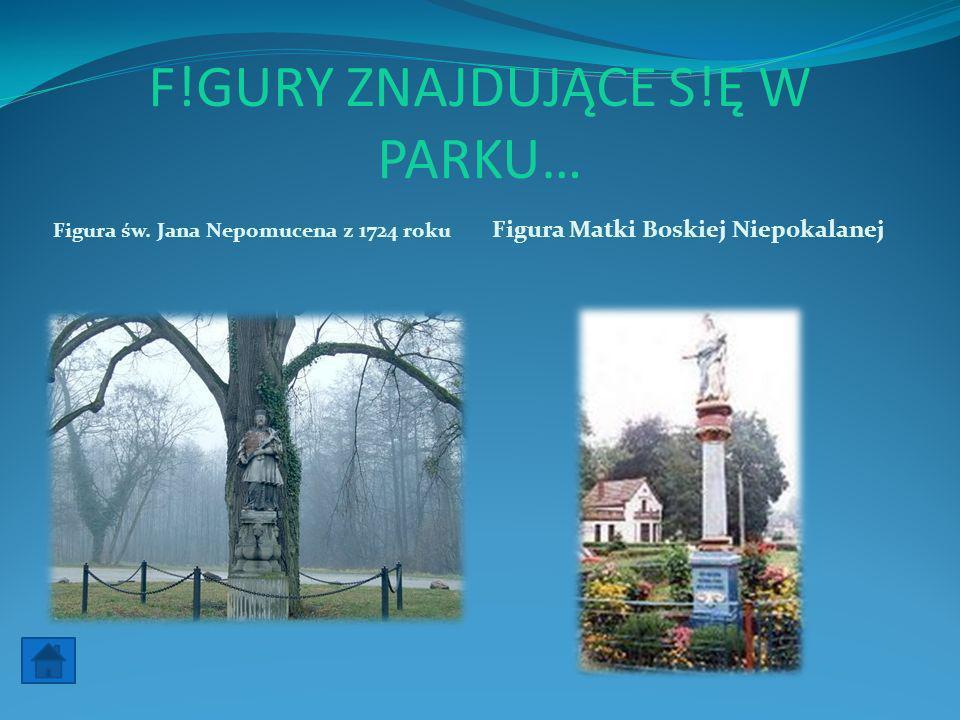 F!GURY ZNAJDUJĄCE S!Ę W PARKU… Figura św. Jana Nepomucena z 1724 roku Figura Matki Boskiej Niepokalanej