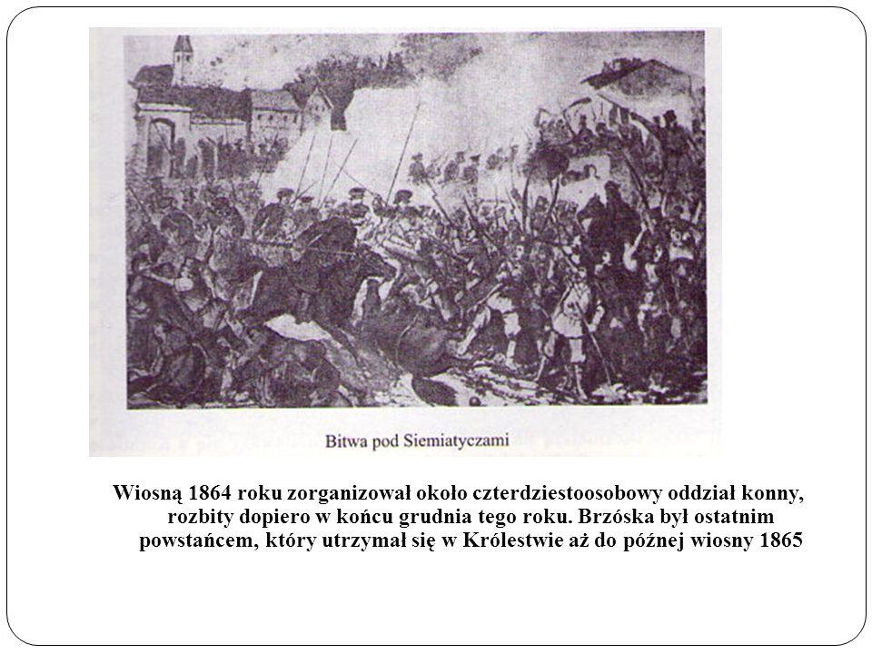 Wiosną 1864 roku zorganizował około czterdziestoosobowy oddział konny, rozbity dopiero w końcu grudnia tego roku. Brzóska był ostatnim powstańcem, któ