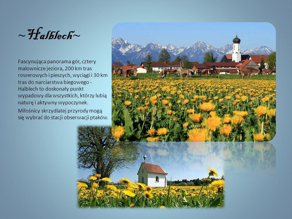~ Steingaden ~ Na przedgórzu alpejskim wzdłuż Szlaku Romantycznego znajduje się kilka uroczych miejscowości wypoczynkowych. Oprócz przepięknych widokó