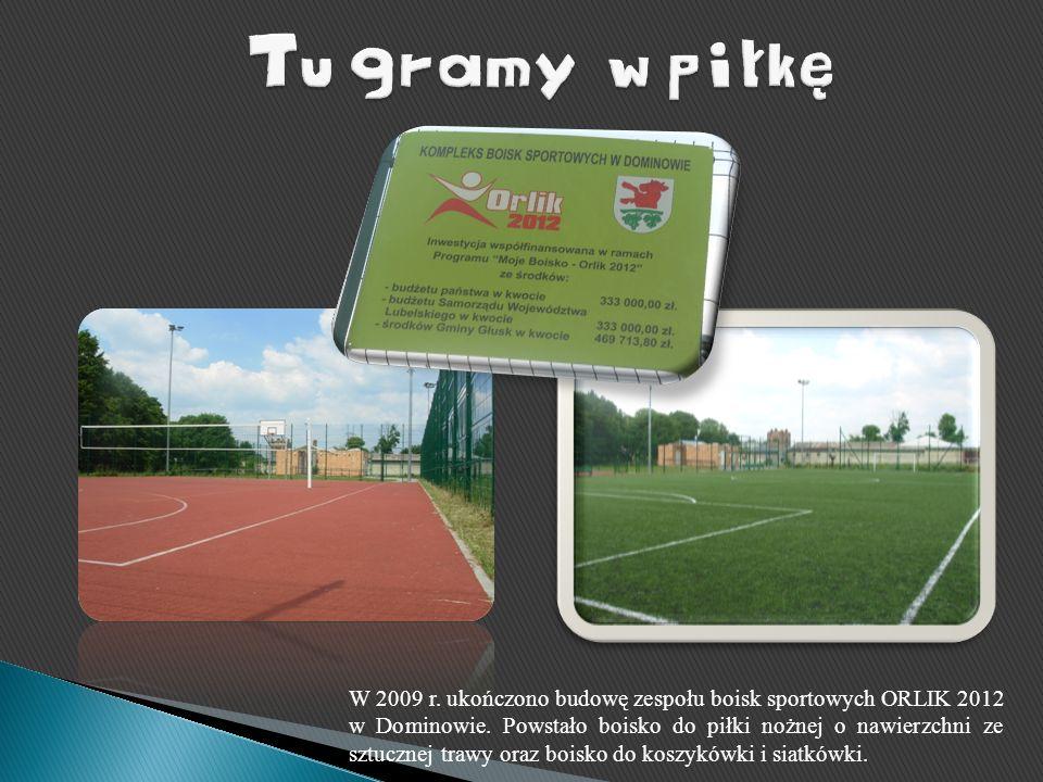 W 2009 r. ukończono budowę zespołu boisk sportowych ORLIK 2012 w Dominowie. Powstało boisko do piłki nożnej o nawierzchni ze sztucznej trawy oraz bois