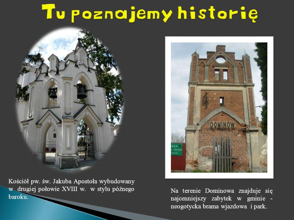 Kościół pw. św. Jakuba Apostoła wybudowany w drugiej połowie XVIII w. w stylu późnego baroku. Na terenie Dominowa znajduje się najcenniejszy zabytek w