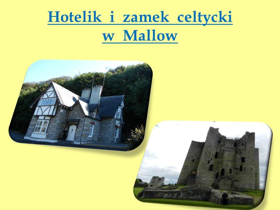 Hotelik i zamek celtycki w Mallow