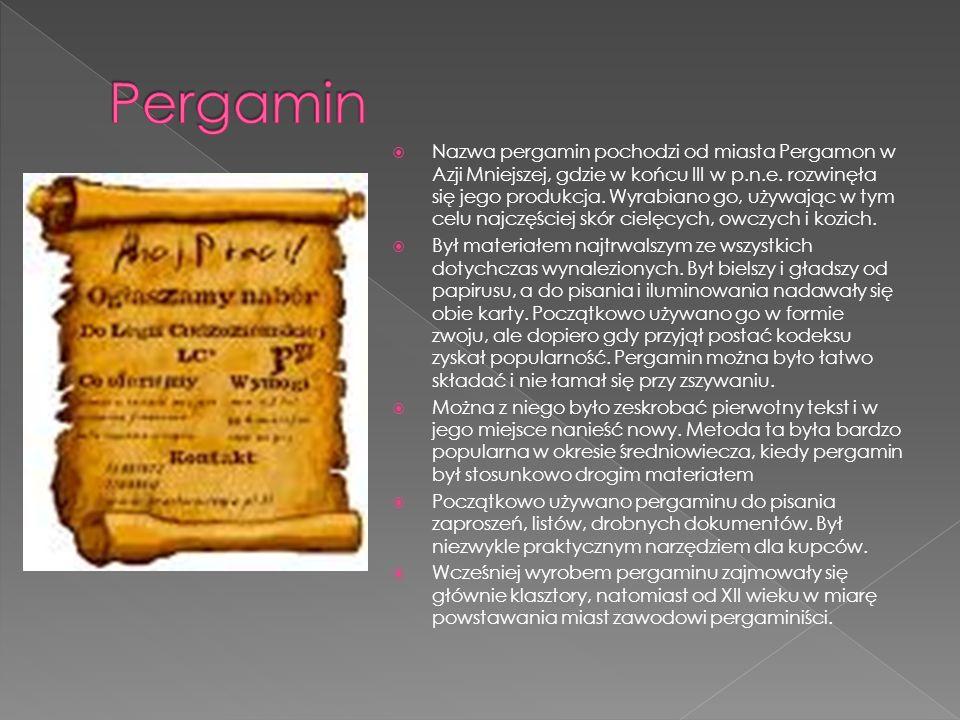 Nazwa pergamin pochodzi od miasta Pergamon w Azji Mniejszej, gdzie w końcu III w p.n.e. rozwinęła się jego produkcja. Wyrabiano go, używając w tym cel
