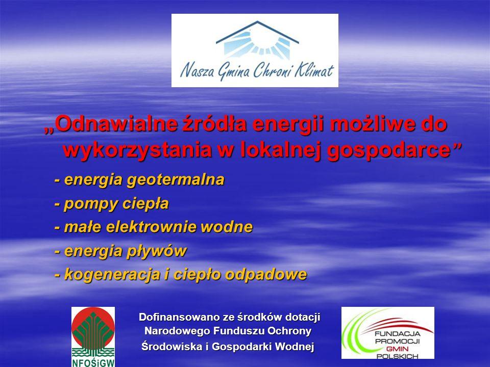 Małe elektrownie wodne (1) Z powodu niekorzystnych warunków rozwoju dużych elektrowni wodnych, wpływających na zachwianie ekosystemów, rozwój energetyki wodnej w Polsce w najbliższych latach będzie należał do tzw.