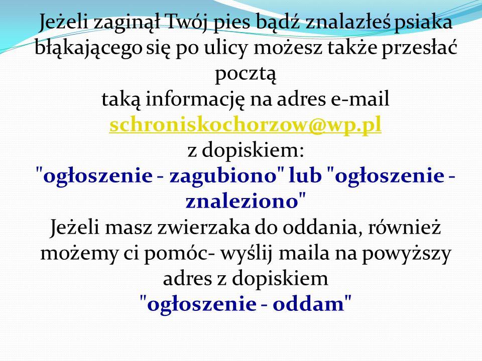 Spotkanie z panią Marzeną Ziaja – Radną Siemianowic Śl.
