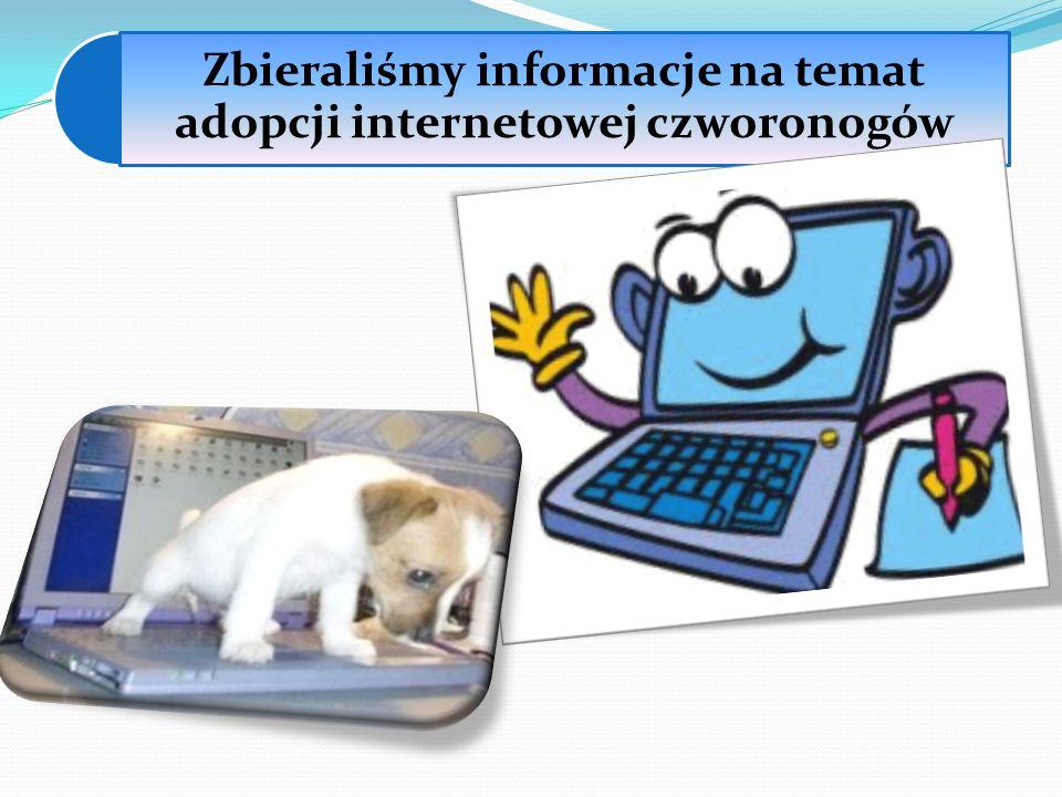 Zbieraliśmy informacje na temat adopcji internetowej czworonogów