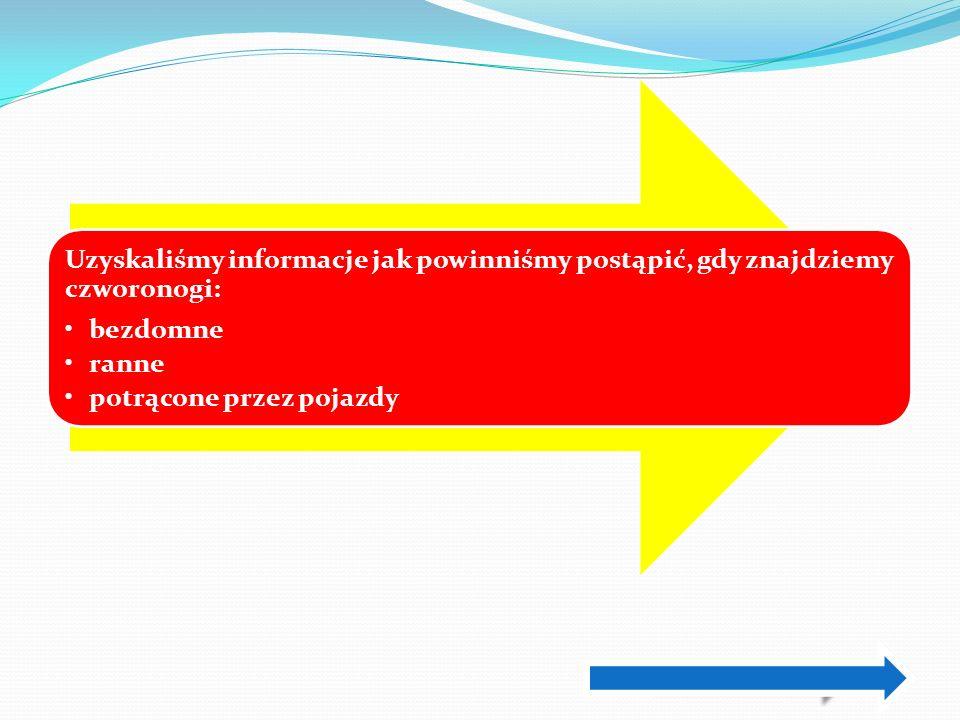 DZWOŃMY POD JEDEN Z NUMERÓW: 986 – Straż Miejska 32) 249 84 52 – Schronisko w Chorzowie 986 – Straż Miejska (32) 249 84 52 – Schronisko w Chorzowie nie zostaniesz obciążony kosztami.