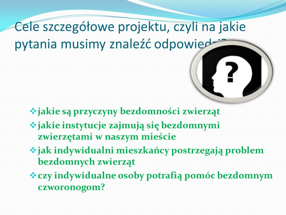Realizacja zadań projektu w oparciu o poszukiwanie odpowiedzi na założone pytania: