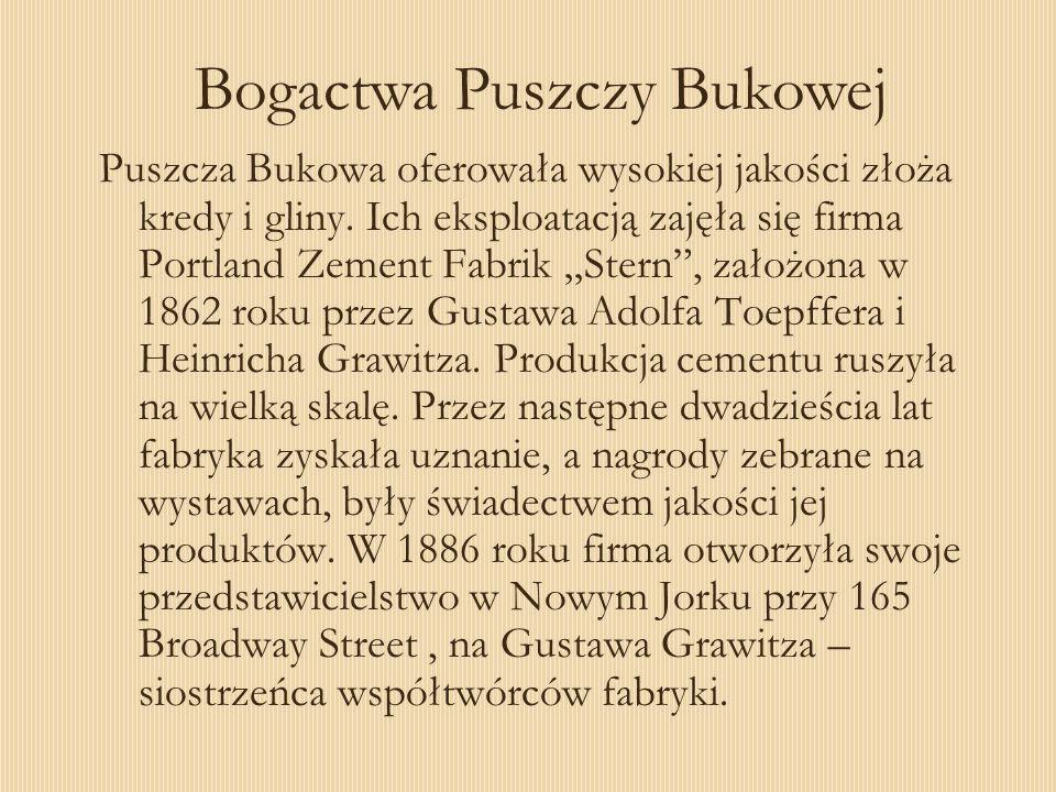 Puszcza Bukowa oferowała wysokiej jakości złoża kredy i gliny. Ich eksploatacją zajęła się firma Portland Zement Fabrik Stern, założona w 1862 roku pr