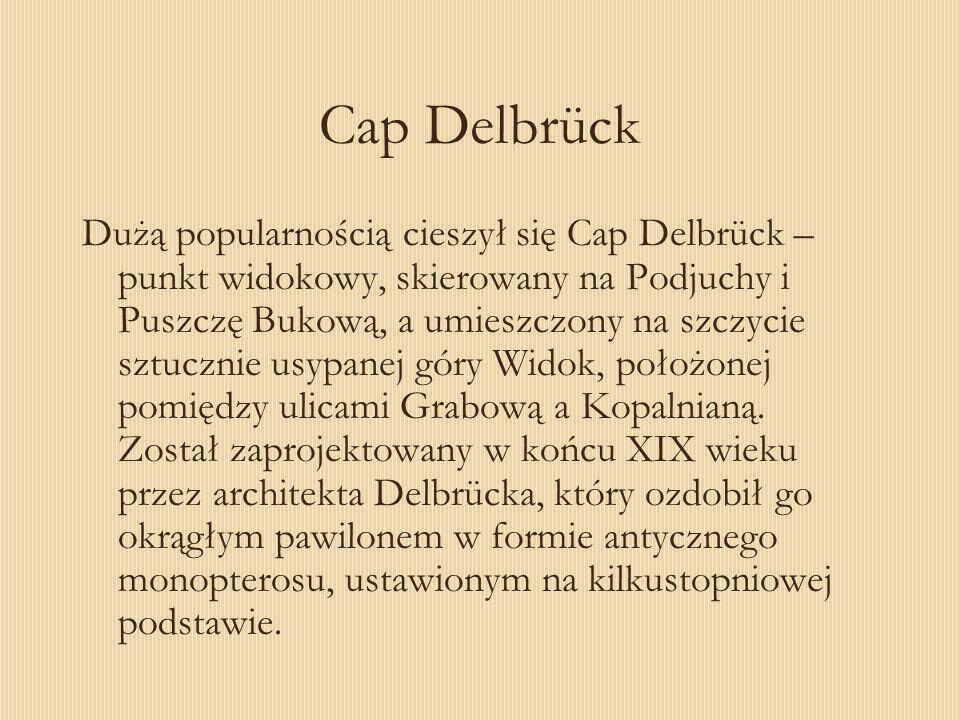 Cap Delbrück Dużą popularnością cieszył się Cap Delbrück – punkt widokowy, skierowany na Podjuchy i Puszczę Bukową, a umieszczony na szczycie sztuczni