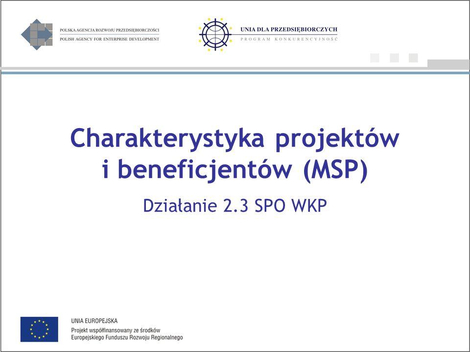 Charakterystyka projektów i beneficjentów (MSP) Działanie 2.3 SPO WKP