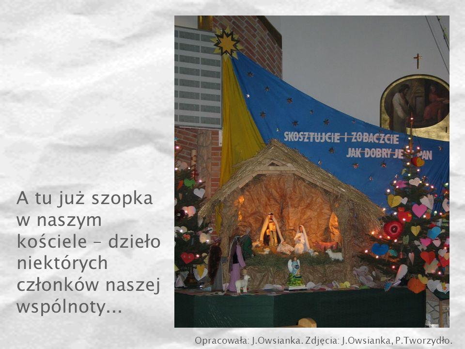 A tu już szopka w naszym kościele – dzieło niektórych członków naszej wspólnoty... Opracowała: J.Owsianka. Zdjęcia: J.Owsianka, P.Tworzydło.