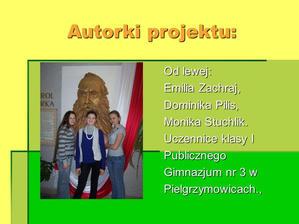 Autorki projektu: Od lewej: Emilia Zachraj, Dominika Pilis, Monika Stuchlik. Uczennice klasy I Publicznego Gimnazjum nr 3 w Pielgrzymowicach.,