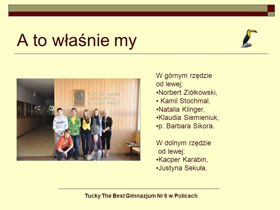 Tucky The Best Gimnazjum Nr 6 w Policach Jesteśmy grupą nastolatków z firmy Tucky The Best.