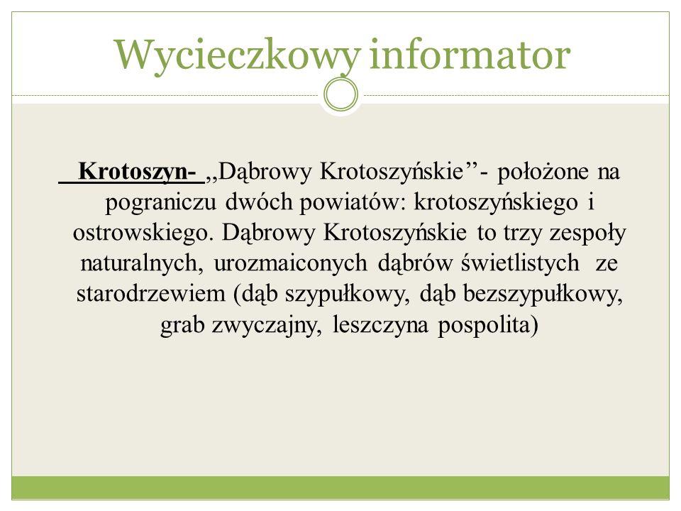 Wycieczkowy informator Krotoszyn-,,Dąbrowy Krotoszyńskie- położone na pograniczu dwóch powiatów: krotoszyńskiego i ostrowskiego. Dąbrowy Krotoszyńskie