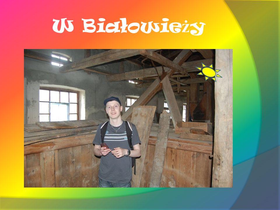 W Białowie ż y