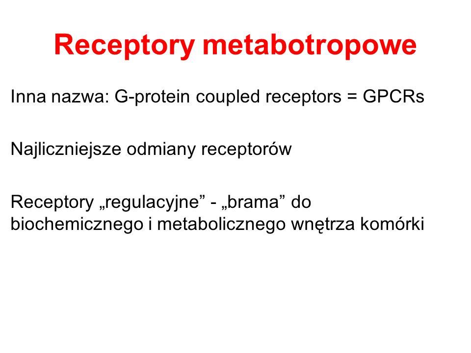 Receptory dla (neuro)peptydów Bardzo liczna rodzina – (żadne nie są kanałami jonowymi) T ypu metabotropowego – (GPCRs) Lub Sprzęgnięte z kinazą tyrozynową Przykładowe receptory: Receptory opioidów (wszystkie metabotropowe): µ, δ, κ Przykłady leków działających poprzez receptory peptydowe: loperamid - agonista opioidowego receptora µ (lek przeciwbiegunkowy, podawany obwodowo może mieć także działanie przeciwbólowe?) trimebutina – (Debridat) nieswoisty agonista receptorów opioidowych - lek w zaburzeniach perystaltyki (pobudzając) w zespole jelita drażliwego loxiglumid – antagonista receptora CCK-A wywołuje uczucie głodu, może być też użyty w leczeniu refluksu (tzw.