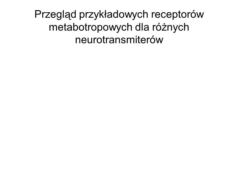 Przegląd przykładowych receptorów metabotropowych dla różnych neurotransmiterów