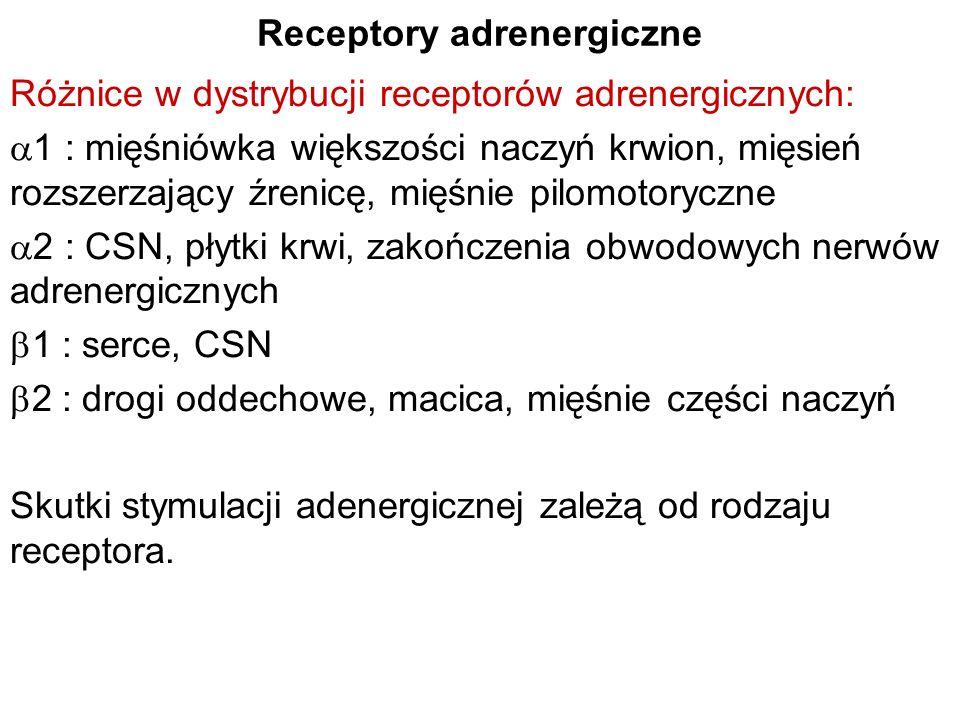 Receptory adrenergiczne Różnice w dystrybucji receptorów adrenergicznych: 1 : mięśniówka większości naczyń krwion, mięsień rozszerzający źrenicę, mięś