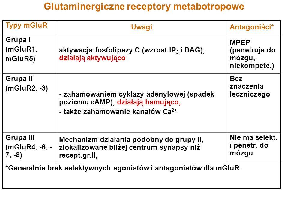 Glutaminergiczne receptory metabotropowe Typy mGluR UwagiAntagoniści* Grupa I (mGluR1, mGluR5) aktywacja fosfolipazy C (wzrost IP 3 i DAG), działają a