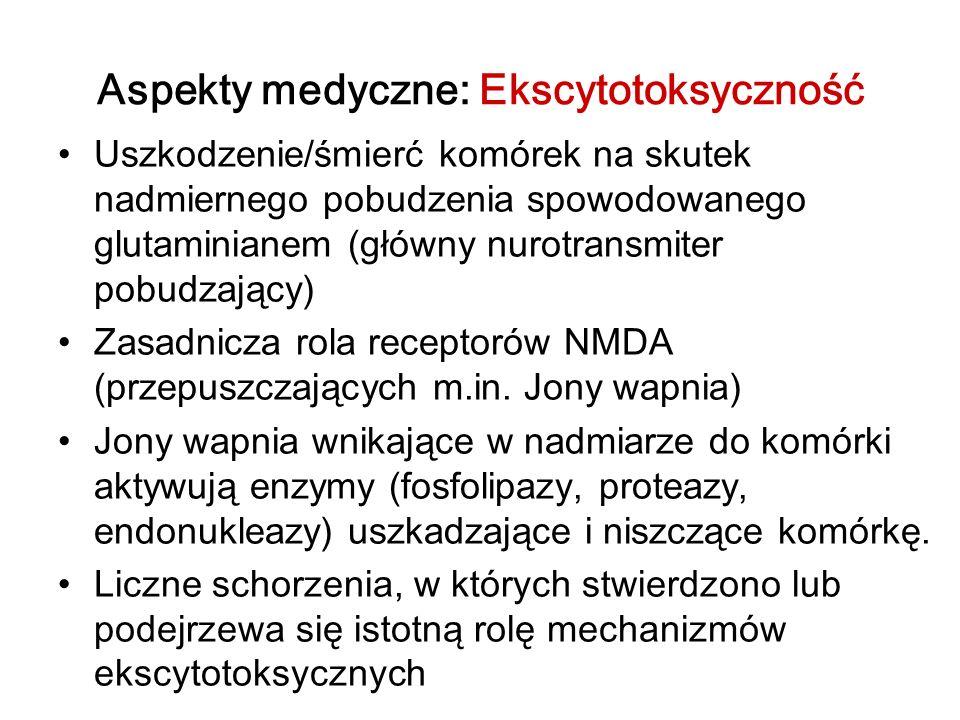Aspekty medyczne: Ekscytotoksyczność Uszkodzenie/śmierć komórek na skutek nadmiernego pobudzenia spowodowanego glutaminianem (główny nurotransmiter po