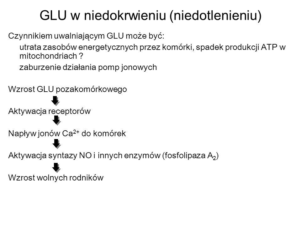 GLU w niedokrwieniu (niedotlenieniu) Czynnikiem uwalniającym GLU może być: utrata zasobów energetycznych przez komórki, spadek produkcji ATP w mitocho