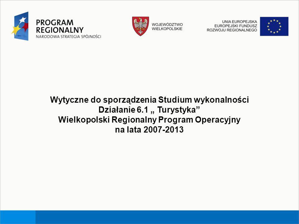 Wytyczne do sporządzenia Studium wykonalności Działanie 6.1 Turystyka Wielkopolski Regionalny Program Operacyjny na lata 2007-2013