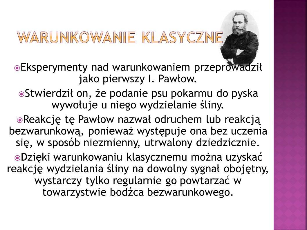 Eksperymenty nad warunkowaniem przeprowadził jako pierwszy I. Pawłow. Stwierdził on, że podanie psu pokarmu do pyska wywołuje u niego wydzielanie ślin