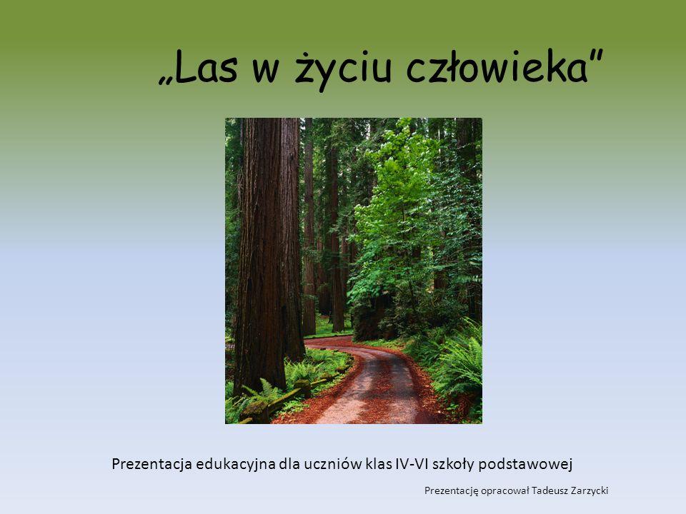 I las - zielony skarbiec człowieka II pozyskiwanie zasobów leśnych III zagrożenia lasu IV społeczna funkcja lasu