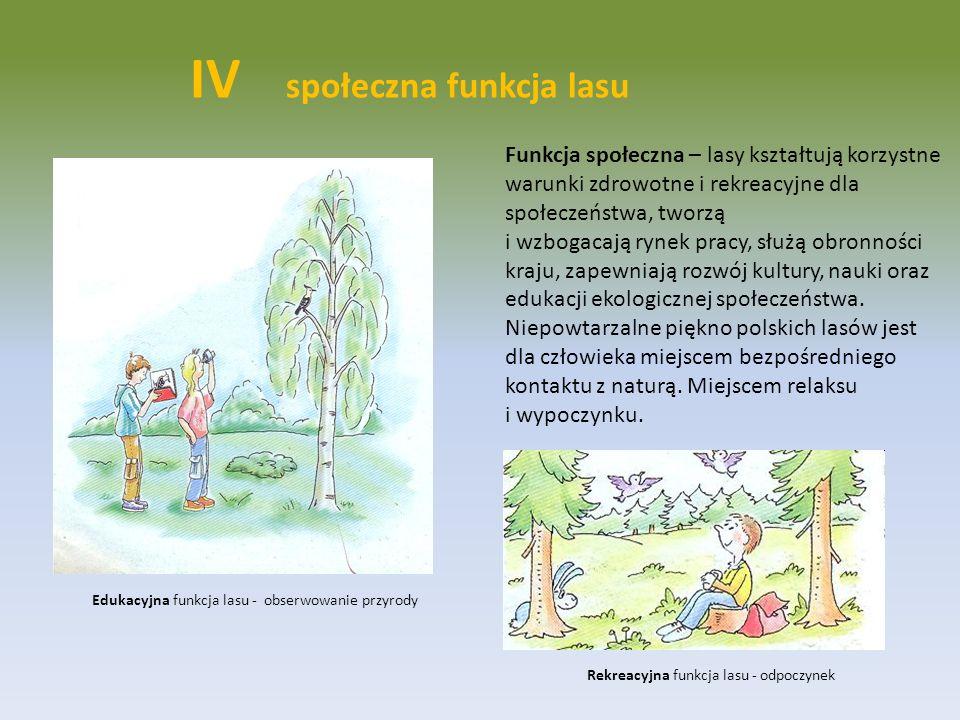 Funkcja społeczna – lasy kształtują korzystne warunki zdrowotne i rekreacyjne dla społeczeństwa, tworzą i wzbogacają rynek pracy, służą obronności kra