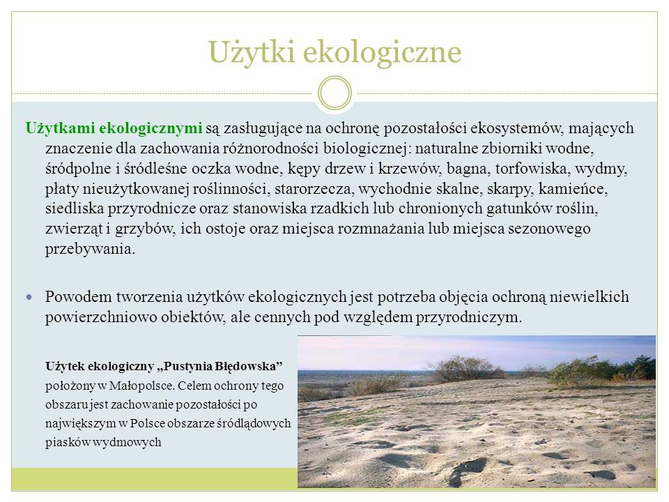 Użytkami ekologicznymi są zasługujące na ochronę pozostałości ekosystemów, mających znaczenie dla zachowania różnorodności biologicznej: naturalne zbi