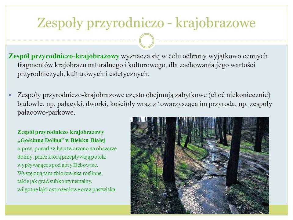 Zespół przyrodniczo-krajobrazowy wyznacza się w celu ochrony wyjątkowo cennych fragmentów krajobrazu naturalnego i kulturowego, dla zachowania jego wa