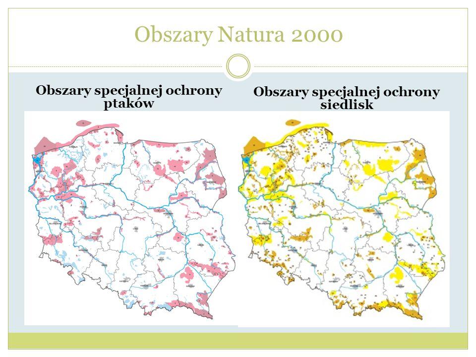Obszary specjalnej ochrony ptaków Obszary specjalnej ochrony siedlisk