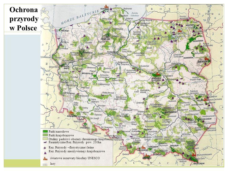 Parki narodowe Parki krajobrazowe Otuliny parków i obszary chronionego krajobrazu Faunistyczne Rez. Przyrody pow. 200ha Rez. Przyrody –florystyczne i