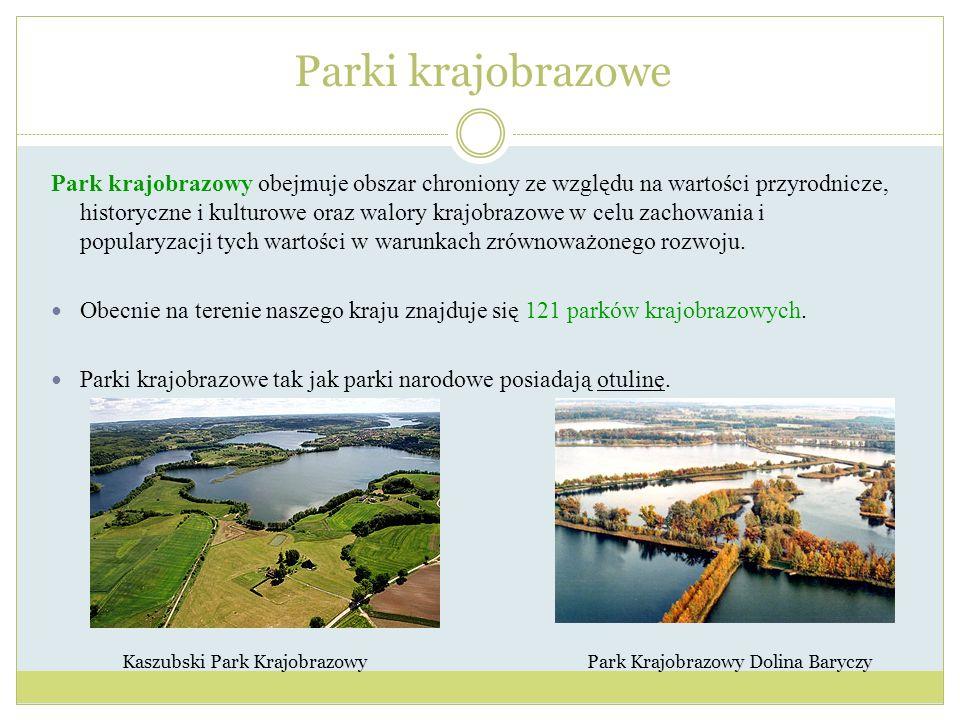 Park krajobrazowy obejmuje obszar chroniony ze względu na wartości przyrodnicze, historyczne i kulturowe oraz walory krajobrazowe w celu zachowania i