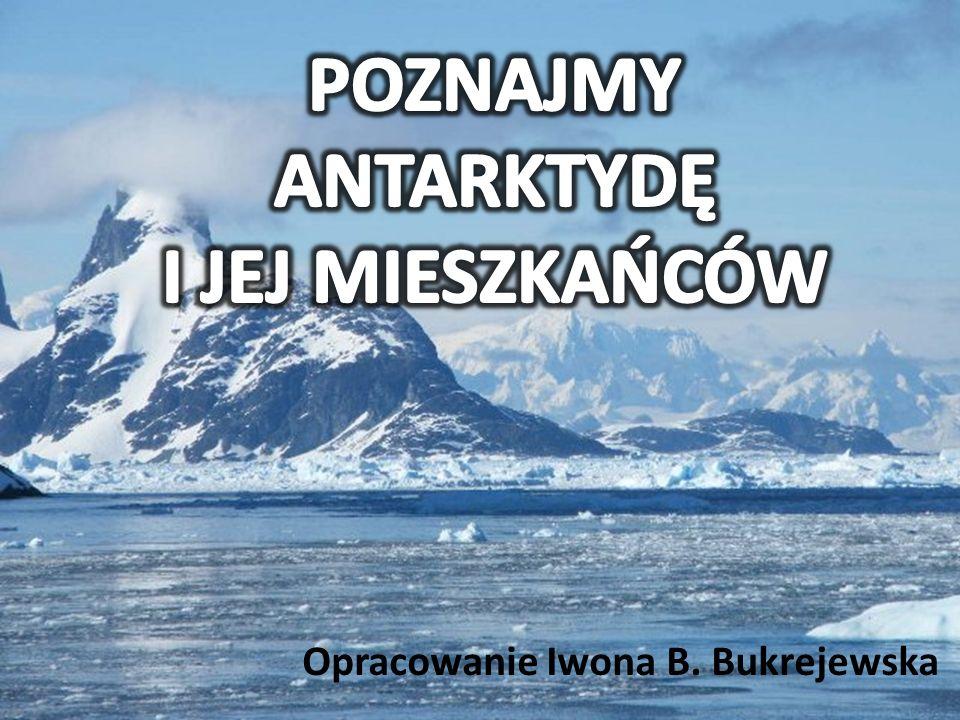 Większość badań na Antarktyce wykonuje się latem.