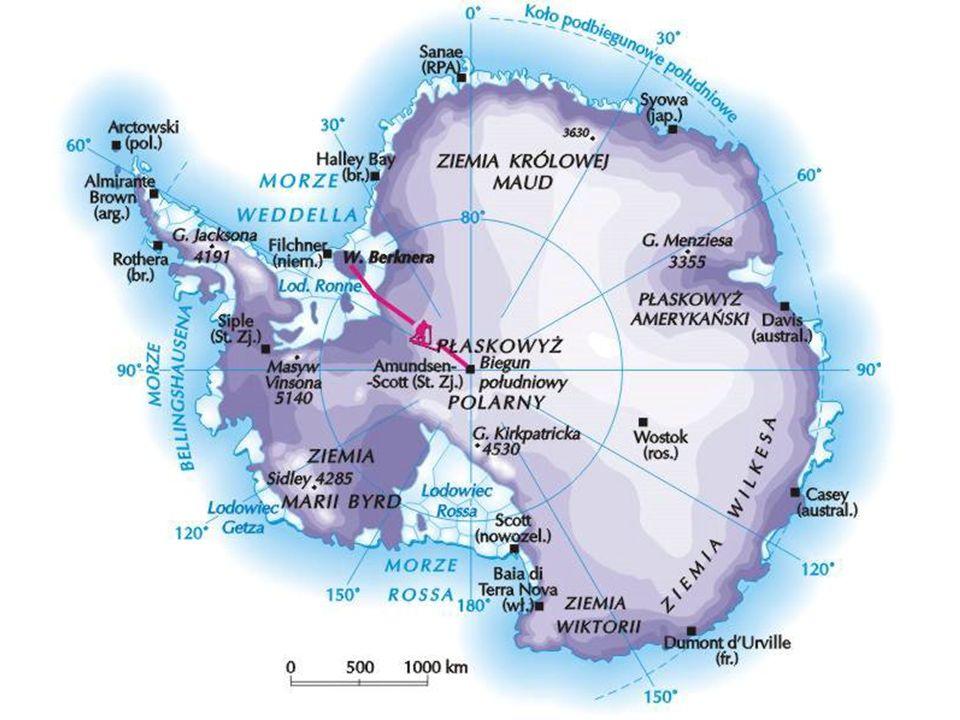 Klimat Antarktyki jest tak surowy, że żadne zwierzę lądowe nie może tam żyć.