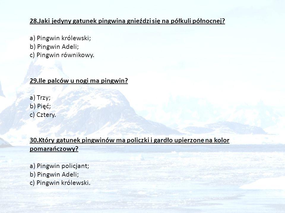 28.Jaki jedyny gatunek pingwina gnieździ się na półkuli północnej? a) Pingwin królewski; b) Pingwin Adeli; c) Pingwin równikowy. 29.Ile palców u nogi