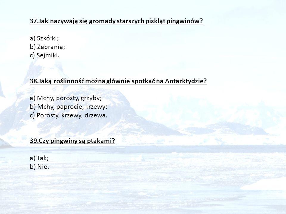37.Jak nazywają się gromady starszych piskląt pingwinów? a) Szkółki; b) Zebrania; c) Sejmiki. 38.Jaką roślinność można głównie spotkać na Antarktydzie