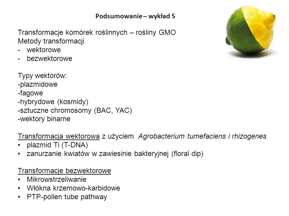 Podsumowanie – wykład 5 Transformacje komórek roślinnych – rośliny GMO Metody transformacji -wektorowe -bezwektorowe Typy wektorów: -plazmidowe -fagow
