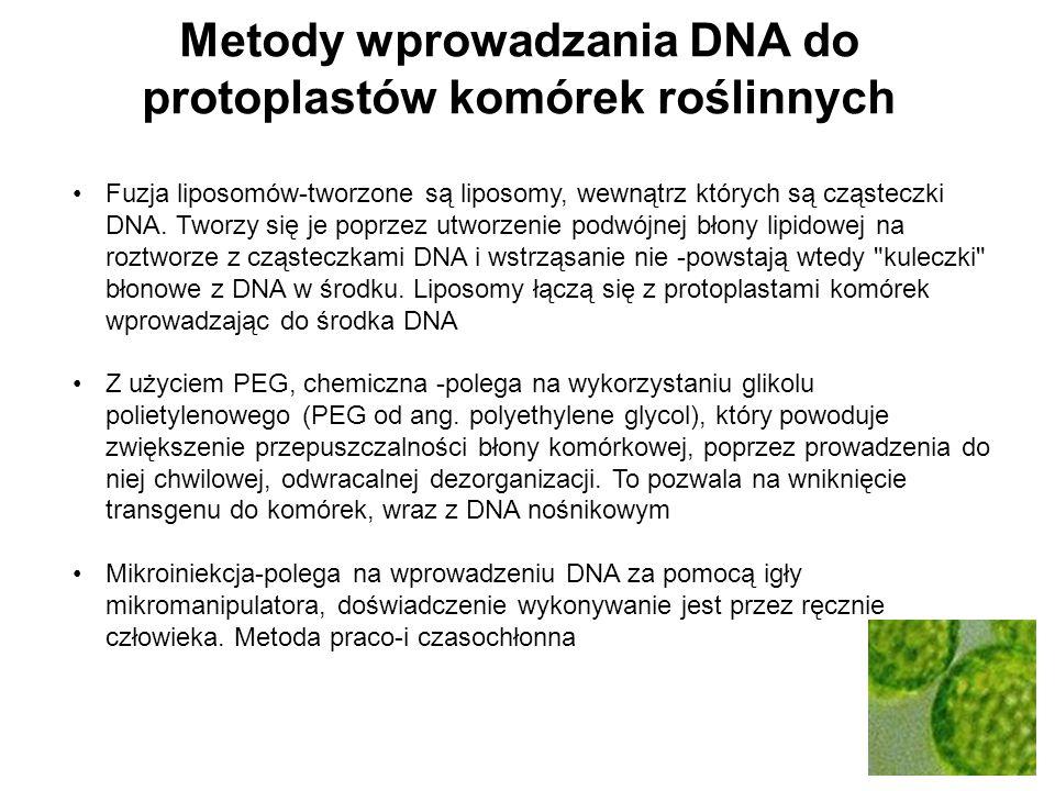Fuzja liposomów-tworzone są liposomy, wewnątrz których są cząsteczki DNA. Tworzy się je poprzez utworzenie podwójnej błony lipidowej na roztworze z cz