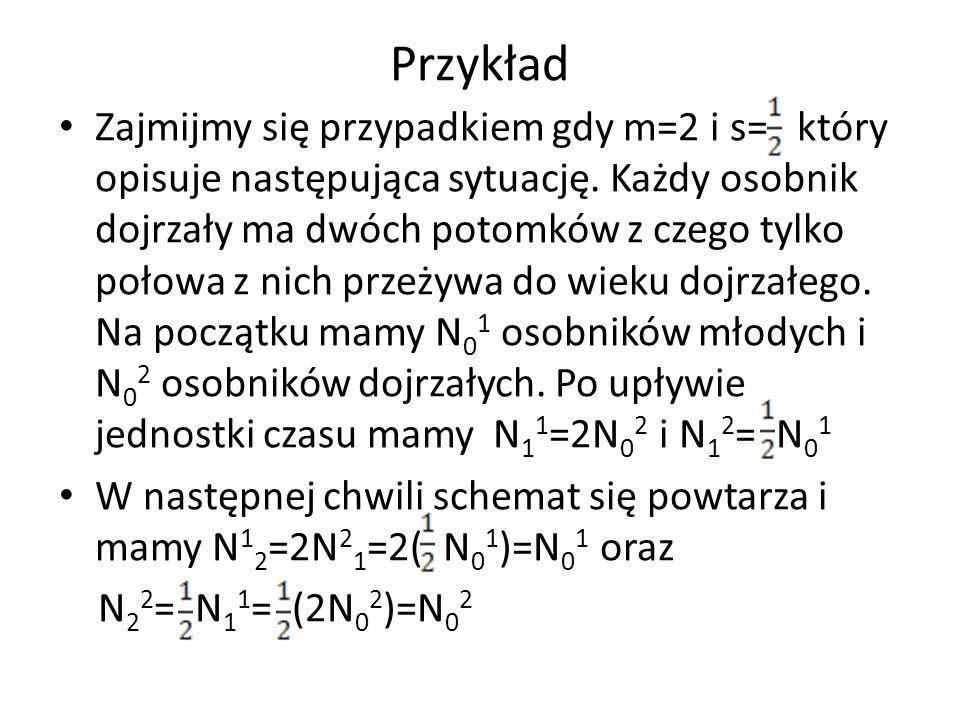 Przykład Zajmijmy się przypadkiem gdy m=2 i s= który opisuje następująca sytuację. Każdy osobnik dojrzały ma dwóch potomków z czego tylko połowa z nic